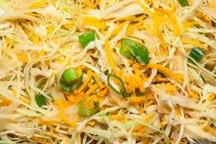 Fertania smażący warzywa Zdjęcie Stock