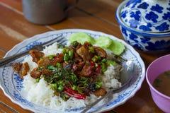 Fertanie Smażący wieprzowina basil, Tajlandzki jedzenie, Wyśmienicie, fertanie Smażył wieprzowiny Chi Obrazy Royalty Free