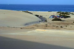 Fertaventura beach. Scenic view of sand dunes on beach with small oasis, Fuertaventura Islands, Canary Islands, Spain royalty free stock photography