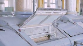 Fertigung des Mehls und der Getreide Weizenmahlen Produktion des Weizenmehls Weizenmehlprägeausrüstung in der Anlage stock video footage