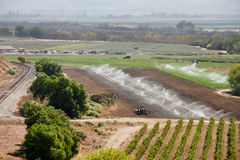 Fertile Calif farm with water Royalty Free Stock Image