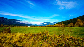 The fertile Farmland of the Fraser Valley of British Columbia. With the Coastal Mountains in the background royalty free stock photo