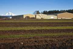 Fertile fields and large warehouses Oregon. Stock Photo
