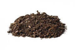 Fertile garden soil texture background top view isolated on white. Fertile soil texture background seen from above, top view. Gardening or planting concept stock photo