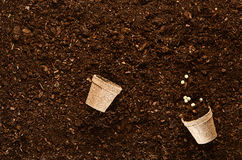 Fertile garden soil texture background top view. Fertile soil texture background seen from above, top view. Gardening or planting concept royalty free stock images