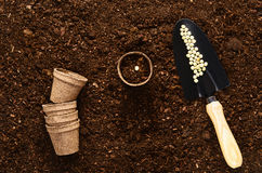 Fertile garden soil texture background top view. Fertile soil texture background seen from above, top view. Gardening or planting concept royalty free stock photo