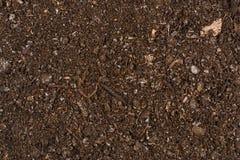 Fertile garden soil texture background top view. Fertile soil texture background seen from above, top view. Gardening or planting concept stock photos
