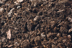 Fertile garden soil texture background top view. Fertile soil texture background seen from above, top view. Gardening or planting concept stock images