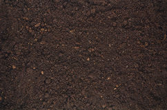 Fertile garden soil texture background top view. Fertile soil texture background seen from above, top view. Gardening or planting concept with copy space stock photo