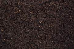 Fertile garden soil texture background top view. Fertile soil texture background seen from above, top view. Gardening or planting concept with copy space Stock Photos