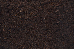 Fertile garden soil texture background top view. Fertile soil texture background seen from above, top view. Gardening or planting concept with copy space stock images