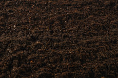 Fertile garden soil texture background top view. Fertile soil texture background seen from above, top view. Gardening or planting concept with copy space Royalty Free Stock Photos