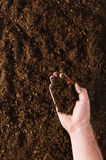 Fertile garden soil texture background top view. Fertile soil texture background seen from above, top view. Gardening or planting concept. Man`s hand planting or stock photo