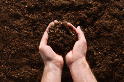 Fertile garden soil texture background top view. Fertile soil texture background seen from above, top view. Gardening or planting concept. Man`s hand planting or stock photos