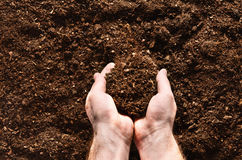 Fertile garden soil texture background top view. Fertile soil texture background seen from above, top view. Gardening or planting concept. Man`s hand planting or stock image