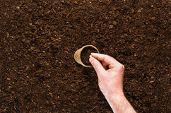 Fertile garden soil texture background top view. Fertile soil texture background seen from above, top view. Gardening or planting concept. Man`s hand planting or royalty free stock image