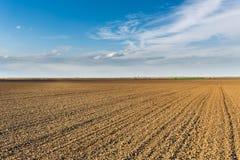 Fertile land, arable crop field. Agricultural landscape.  Royalty Free Stock Image
