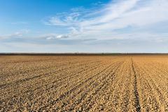 Fertile land, arable crop field, agricultural landscape.  Royalty Free Stock Photo