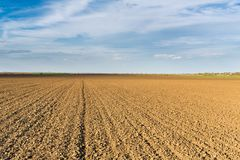 Fertile land, arable crop field. Agricultural lanscape.  Royalty Free Stock Photos