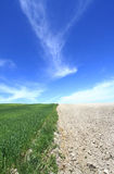 Fertile land and barren land Stock Image