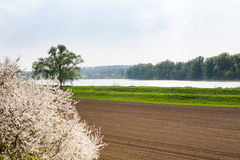 Fertile land on the shores of lake Royalty Free Stock Photography