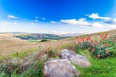 The hills and fertile valleys of the Dargle. The fertile lands of the Dargle in Kwa zulu natal. The cold wind blows and send the clouds racing across the sky royalty free stock photo