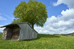Fertile luscious farmland in Germany`s Bavarian Alps. A small wood shed and a stack of firewood in the middle of green pastures in the Bavarian countryside royalty free stock photos