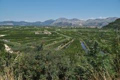 The fertile Neretva Valley in Croatia Stock Images