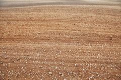 Fertile plowed soil Royalty Free Stock Photography
