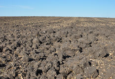 Fertile, plowed soil of an agricultural field Stock Image
