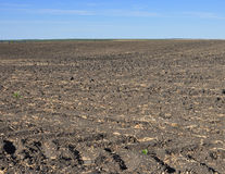 Fertile, plowed soil of an agricultural field. Against blue sky royalty free stock images