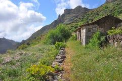 Fertile soil. Lush vegetation on fertile grounds of la gomera stock photography