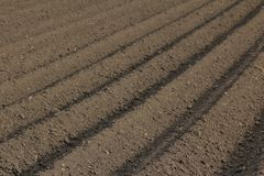 Fertile soil as basis for a functional agricultural cultivation. Agriculture themed background Freshly ploughed field royalty free stock image