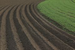 Fertile soil as basis for a functional agricultural cultivation. Agriculture themed background Freshly ploughed field royalty free stock photography