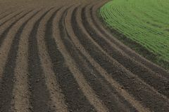 Fertile soil as basis for a functional agricultural cultivation. Agriculture themed background Freshly ploughed field royalty free stock photo