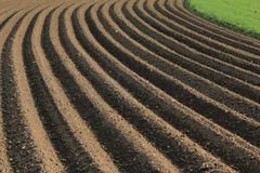 Fertile soil as basis for a functional agricultural cultivation. Agriculture themed background Freshly ploughed field stock image