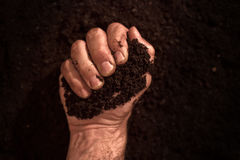 Fertile soil in dirty male hands. Man holding arable cultivated humus dirt Royalty Free Stock Photo