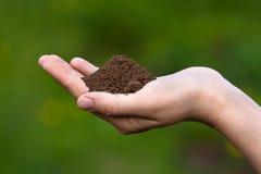 Fertile soil in hands of women. On blurred background stock image