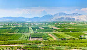 Fertile valley in mountains of Montenegro Stock Photos