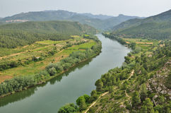 Fertile valley of the Spanish river Ebre Stock Photo