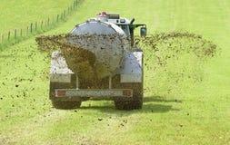 Fertilización con el abono líquido en prado foto de archivo