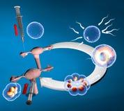 Fertilización in vitro, ruta de la inseminación artificial stock de ilustración