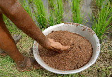 fertilizante foto de stock