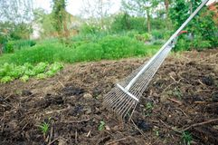 Fertilization with compost stock photos