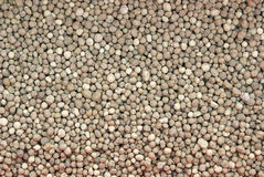 Fertilizer 06 Royalty Free Stock Photo