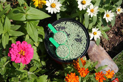Fertilizer. It is all purpose plant food feed to flowers of garden Royalty Free Stock Images