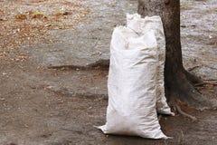 Fertilizer bag. Agriculture farm with fertilizer bag royalty free stock images