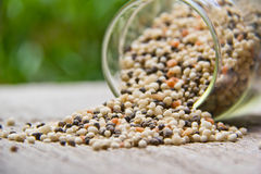 Fertilizer. In glasses on wood board stock images