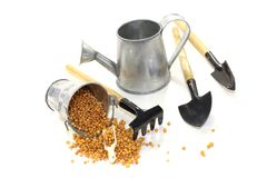 Fertilizer with watering can. On a bright background royalty free stock photo