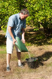 Fertilizing. Agricultural worker fertilizing a citrus plantation with phosphate Royalty Free Stock Photography